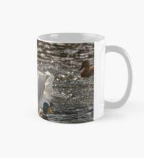 Swan on the Neckar Mug