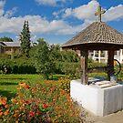 Well, Varatec Monastery, Romania by Maria Draper