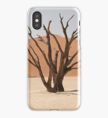 Dead Vlei iPhone Case/Skin