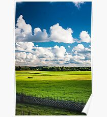 Pure nature Poster