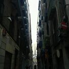Comparisons angled onto contrasting viewpoints. 31 by Juan Antonio Zamarripa [Esqueda]