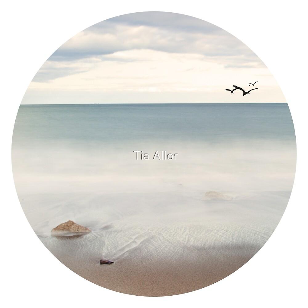 Solace Beach Ocean Sea Sand New England Maine  by Tia Allor-Bailey