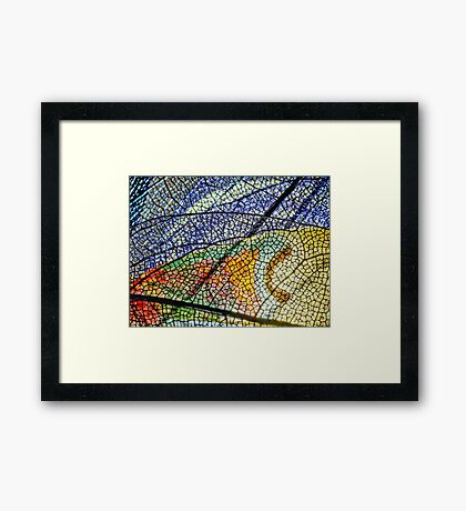 In Mother Nature's Cathedral Framed Print