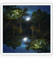 Moonset in coniferous forest Sticker