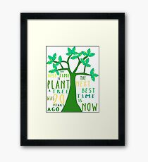 The best time to plant a tree Framed Print