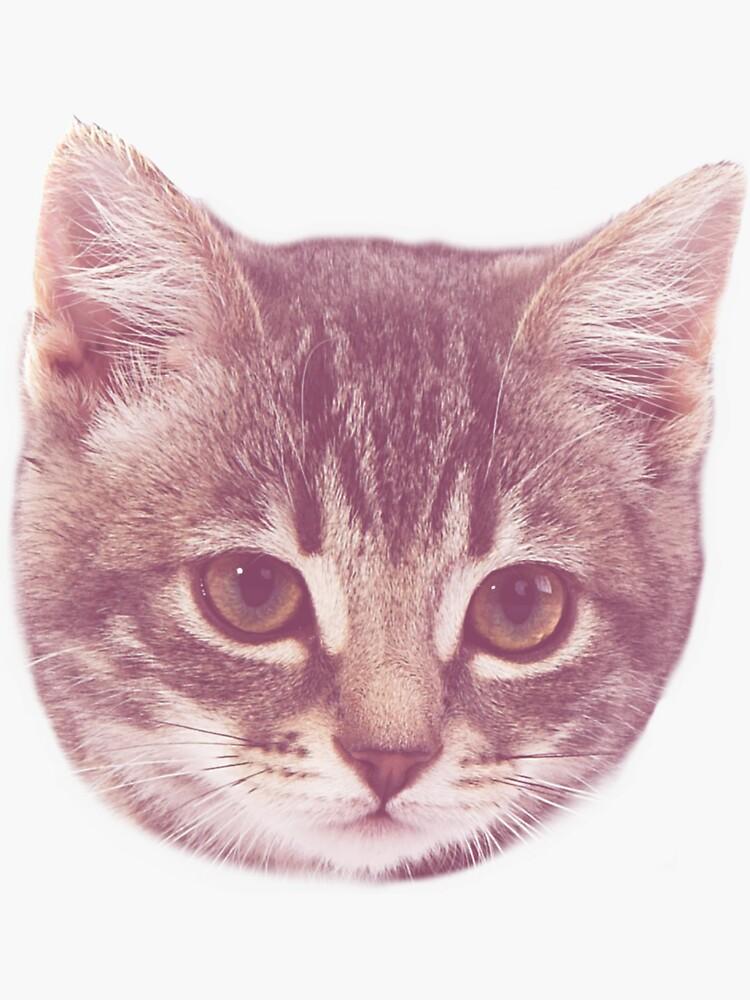 Lindo gatito de FreakC