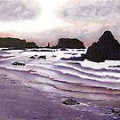 Harris Beach, Oregon USA by Barbara Applegate