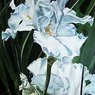 White Irises by Theresa Comstock