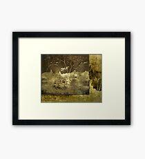 SOUL for nature Framed Print