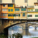 Ponte Vecchio - Florence by gluca