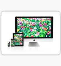 Multiscreen - Apple Watch, iPhone, iPad and iMac screens  Sticker