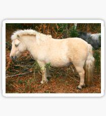 Miniature Pony Sticker