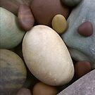 Rock Garden 4 by phillipcmiller