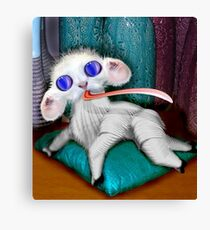 Baby Land Strider Canvas Print