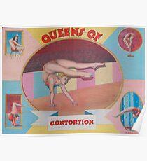 Queens of contortion. Poster