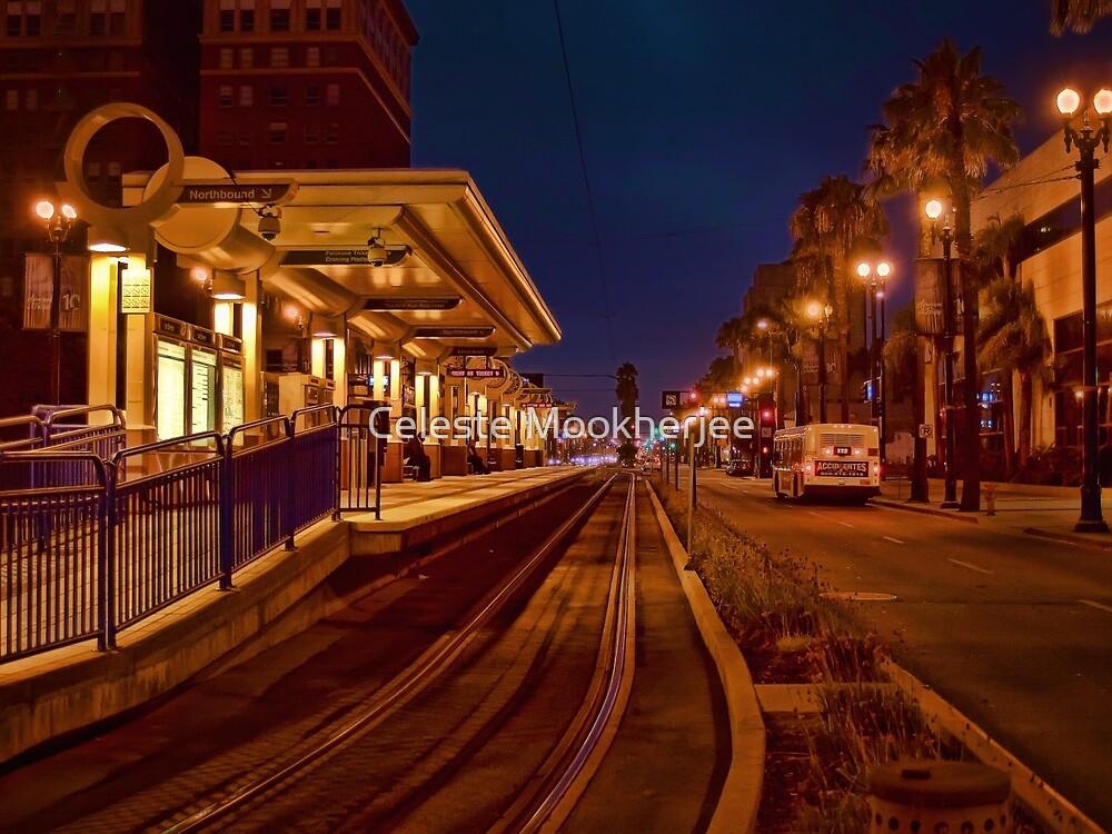 Metro Rail at twilight by Celeste Mookherjee