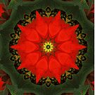 Red Poinsettia Mandala by lightvision