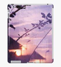 Abstract Nature Window Glass Sunset Landscape iPad Case/Skin