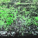 Pretty Green Skies by EtiKat
