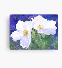 White rose (Rosa Rugosa Alba) (Original painting sold) Canvas Print