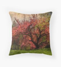 Blooming cherry blossoms in Central Park, NYC Throw Pillow