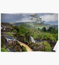 The Loup Of Fintry Poster