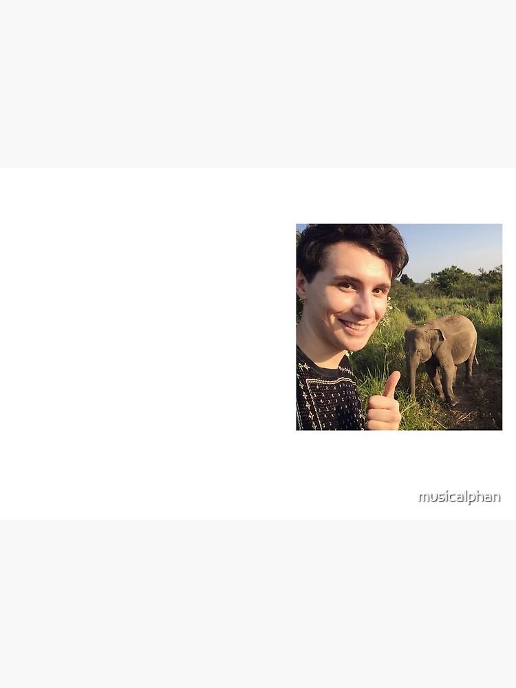 Safari Dan Elefant von musicalphan
