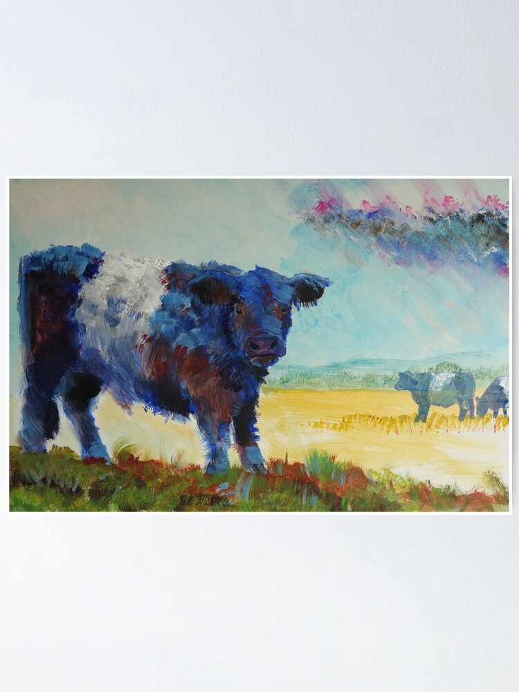 Quot Belted Galloway Cow Dartmoor Landscape Painting Quot Poster