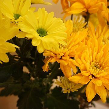 Yellow/Orange Flowers Close-up by cElsiePics