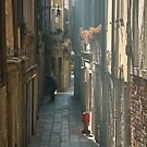 """"""" La calle """" - Venice by gluca"""