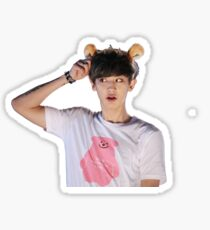 Chanyeol (Park Chanyeol) of EXO w/ Headband Sticker