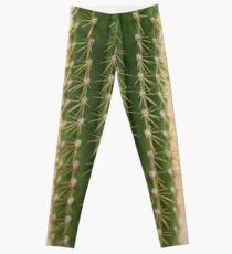 Baby Cactus Leggings