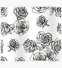 Flower roses graphic black and white  had drawing sketch Poster