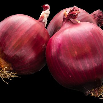 Red onion by acasali