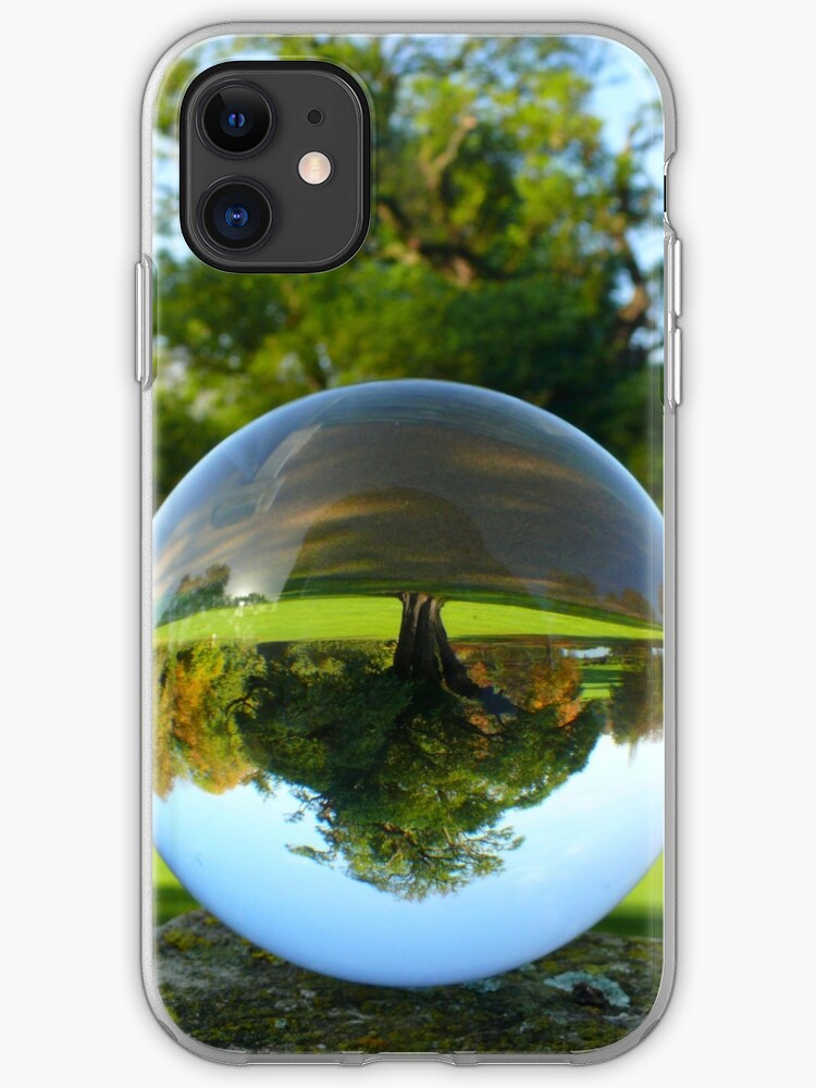 GLASS IN THE PARK iphone 11 case