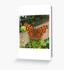 Dream Creatures, Butterfly 001, DeepDream Greeting Card