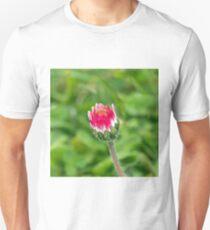 Common Daisy Bud T-Shirt