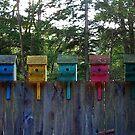 Birdhouse Blues by Wayne King