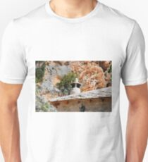 Chimney in Blagajska T-Shirt