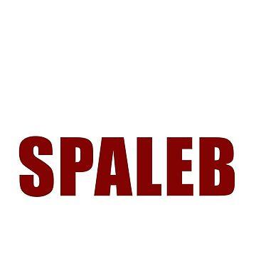 Team Spaleb by amzyydoodles