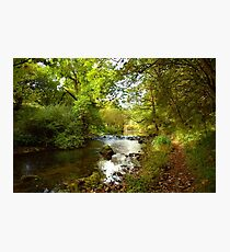 Millers Dale River Walk Photographic Print