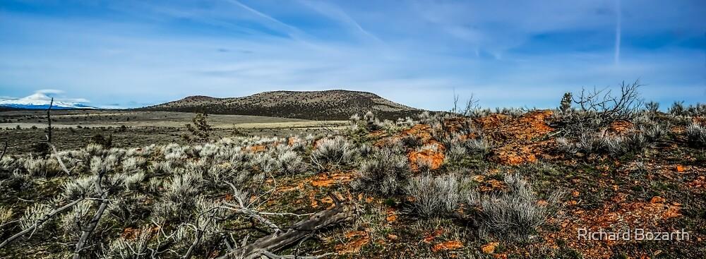 High Desert Juniper Butte by Richard Bozarth