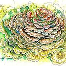 Mushroom cabbage watercolor painting by meomeo