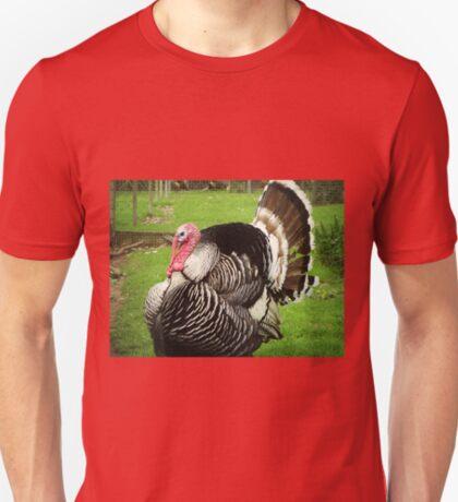 *Handsome bird that got away* T-Shirt