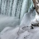 House by the falls by Dave Riganelli