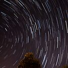 Star Trails by Dave Riganelli