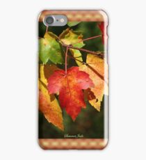 Autumn Maple Leaves ~ Nature's Work iPhone Case/Skin