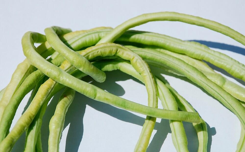 Bundle of Yardlong Beans by jojobob