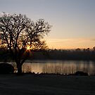 Forest Mere Sunrise by Sue Robinson