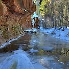 West Fork Reflection by Sue  Cullumber